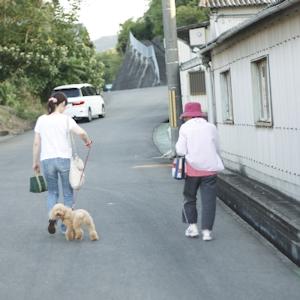 坂道の散歩