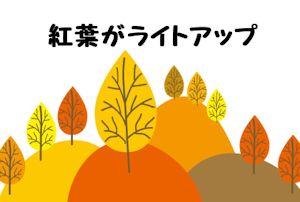 大山の紅葉01