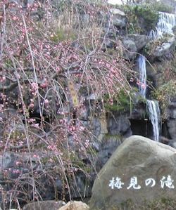 梅見の滝01