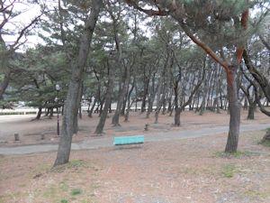 上大島キャンプ場エリア01