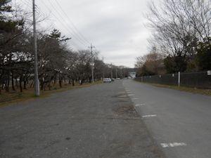 上大島キャンプ場脇駐車場01