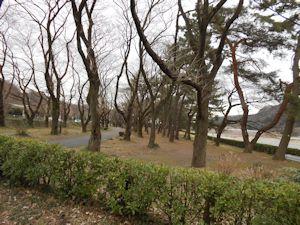 上大島キャンプ場エリア