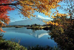 富士山麺と食のフェスティバル02 - コピー