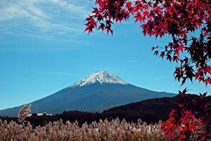 富士山麺と食のフェスティバル03 - コピー