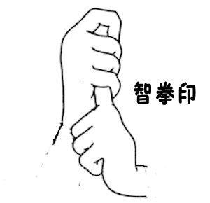 申年生まれ智拳印 - コピー