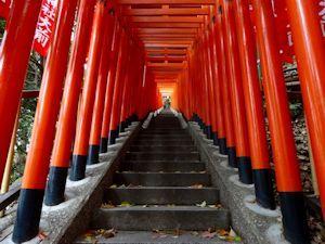 赤坂日枝神社06 - コピー