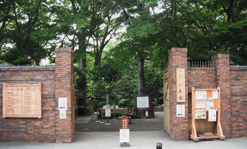 六義園しだれ桜ライトアップ03 - コピー