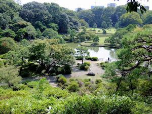 六義園しだれ桜ライトアップ04 - コピー
