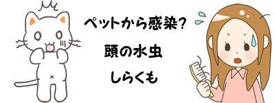 頭の水虫02 - コピー