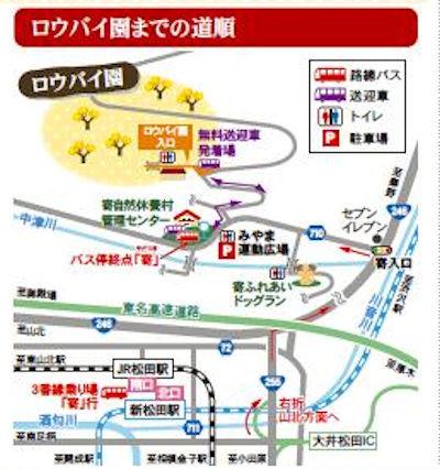松田町寄ロウバイまつり04 - コピー