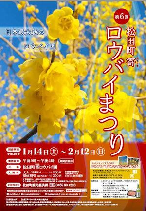 松田町寄ロウバイまつり02 - コピー